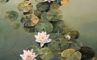 Colección de cuadros Nature Painting
