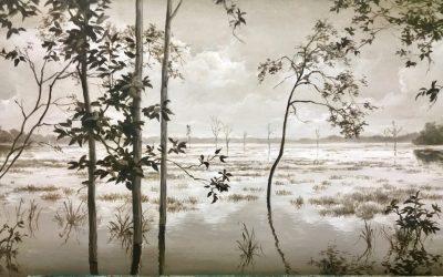 Exposición en galería Terraferma